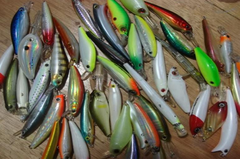 Pesca de Robalos com Artificiais