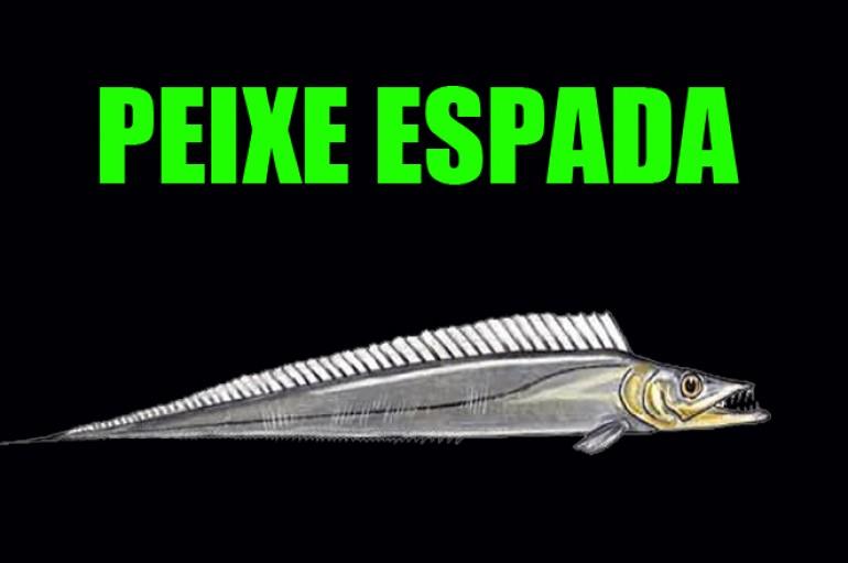 Pesca do peixe espada