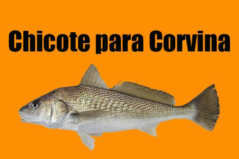 Chicote para pesca de Corvina