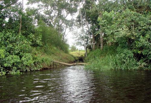 local-traira Pesca da Traíra