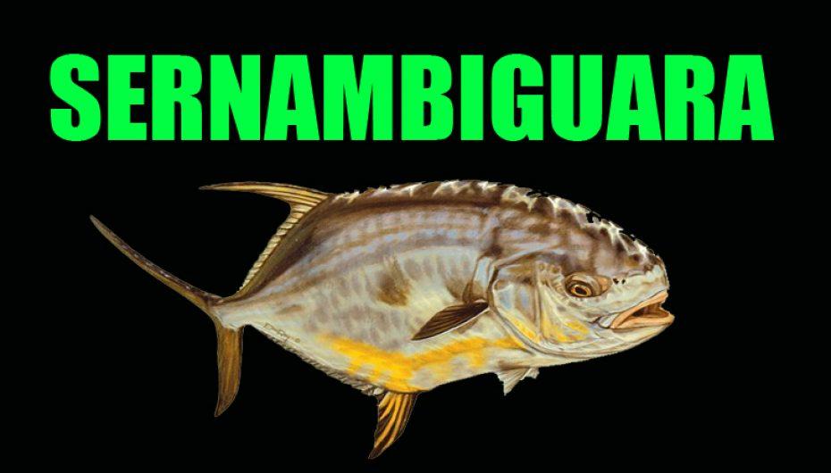 Sernambiguara