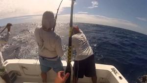 pesca-oceanica-300x169 Pesca Alternativa descubra suas modalidades