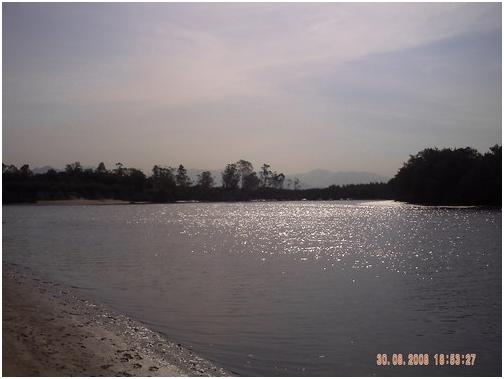 humaita-1 Onde pescar a Tainha