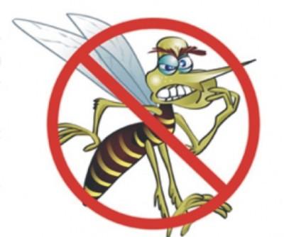 mosquito Dica para afastar mosquitos