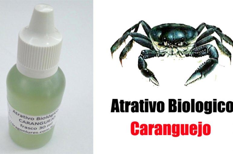 Atrativo Biológico Caranguejo