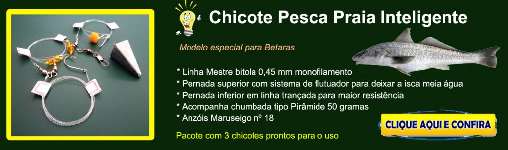 baner-chicote-inteligente-loja-iscas-1024x303 Chicote Pesca Praia Inteligente