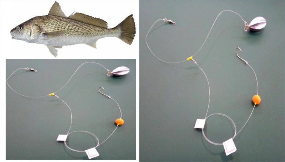 Chicote Pesca Corvina Inteligente