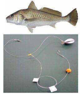 chicote-corvina-flutuador-257x300 Chicote Pesca Corvina Inteligente